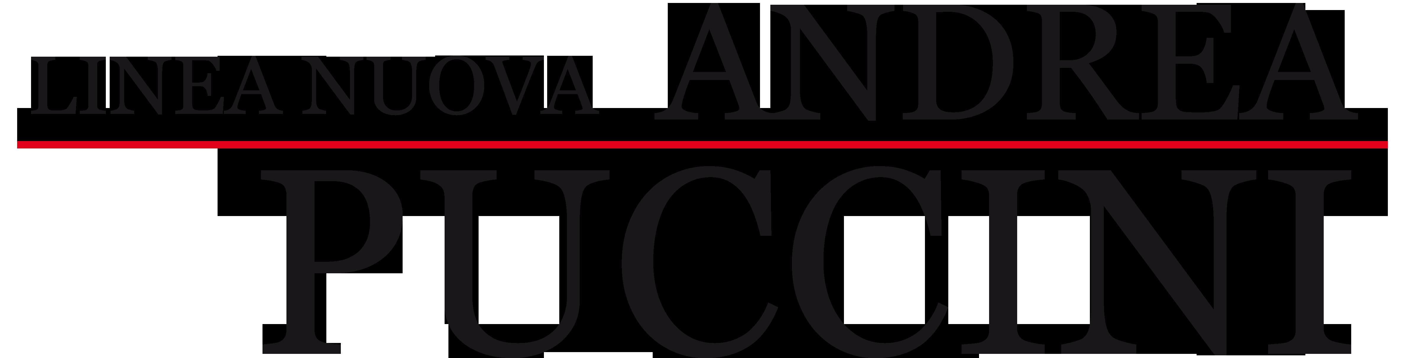 Andrea Puccini